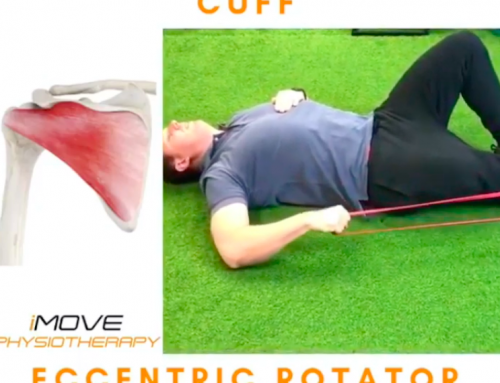 Rotator Cuff Exercise for Shoulder Pain